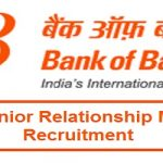 BOB Senior Relationship Manager Recruitment 2018 for 424 Wealth Management Professionals Posts @bankofbaroda.in