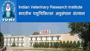 Indian Veterinary Research Institute Recruitment 2019